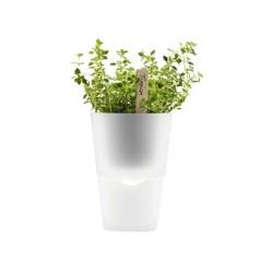 Pot à plantes aromatiques Ø11cm Eva Solo